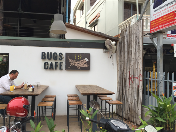 Bugs Cafe1_R